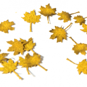 AK8103 maple autumn ak-interactive vegetation diorama