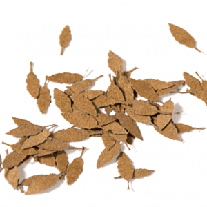 AK8109 universal dry leaves akinteractive diorama vegetation