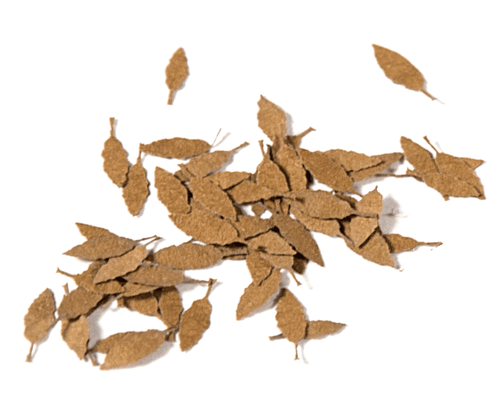 UNIVERSAL DRY LEAVES 1:35 - AK Interactive | The ...