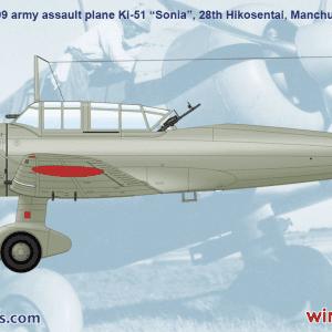 D5-04 wingsy kits akinteractive pack