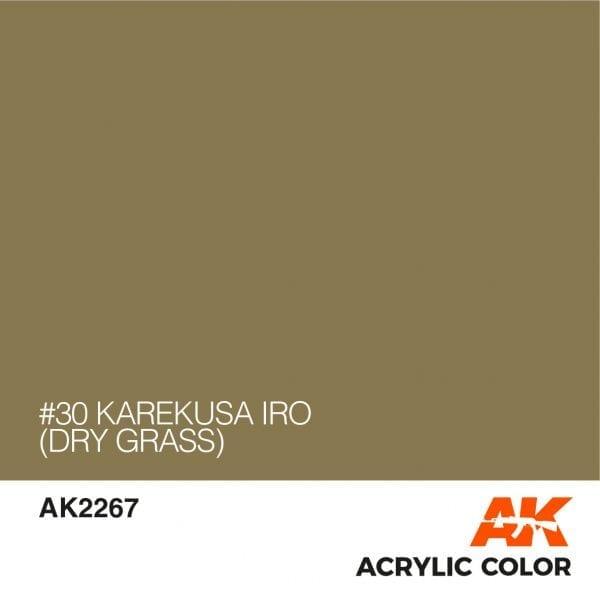 AK2267 #30 KAREKUSA IRO (DRY GRASS)
