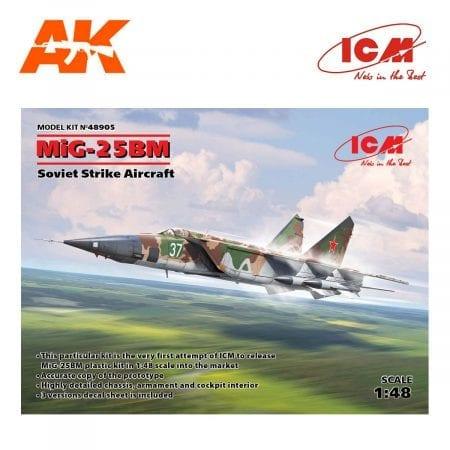 ICM48905 (1)
