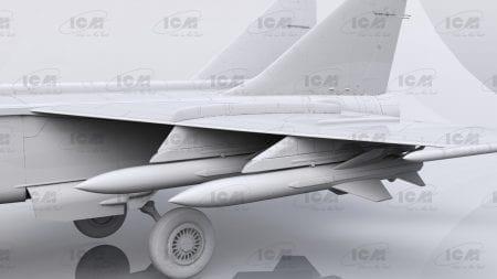 ICM48905 (3)