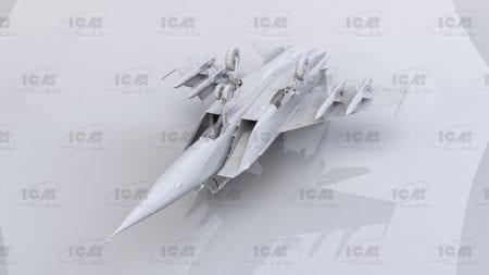 ICM48905 (5)